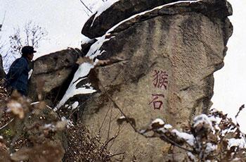 jbo八景之七:玲珑剔透猴儿石